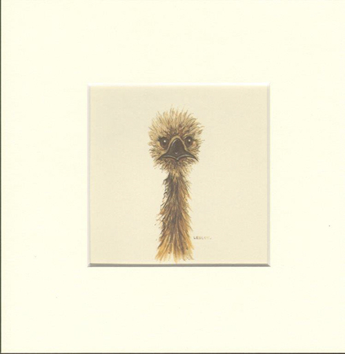 Matted Print Emu, artwork by Lesley Davies