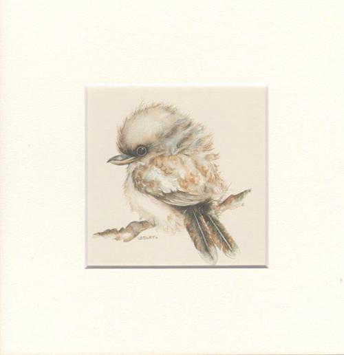 Kookaburra Matted Print, Artwork by Lesley Davies