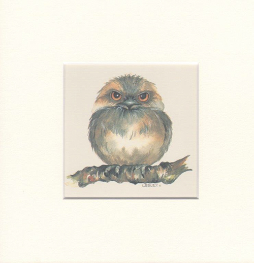 Matted Print Tawny Frogmouth, artwork by Lesley Davies