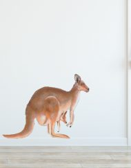 Kangaroo-Wall-Sticker