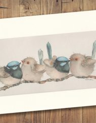Blue Wren Print Medium
