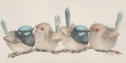 Blue Wrens Print Medium