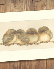 Tawny Frogmouth Print