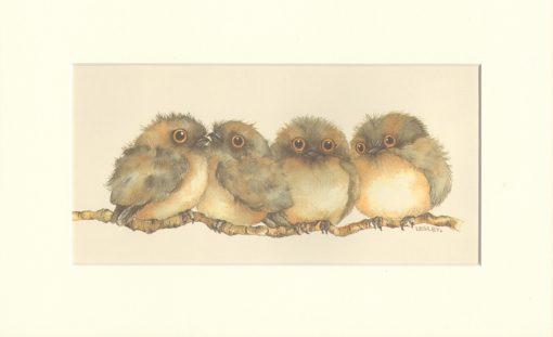 Tawny Frogmouth Print Medium