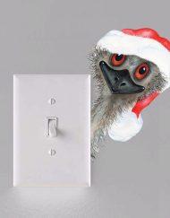 Christmas Gifts & Decal