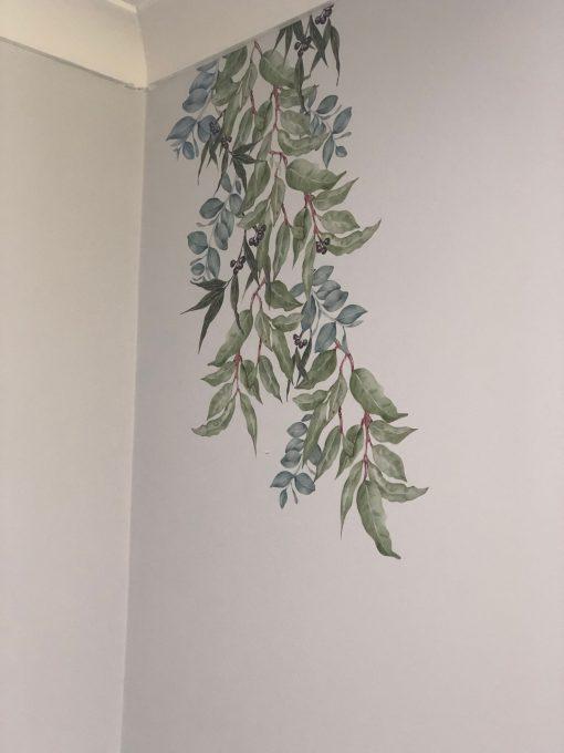 Australian Native Eucalyptus